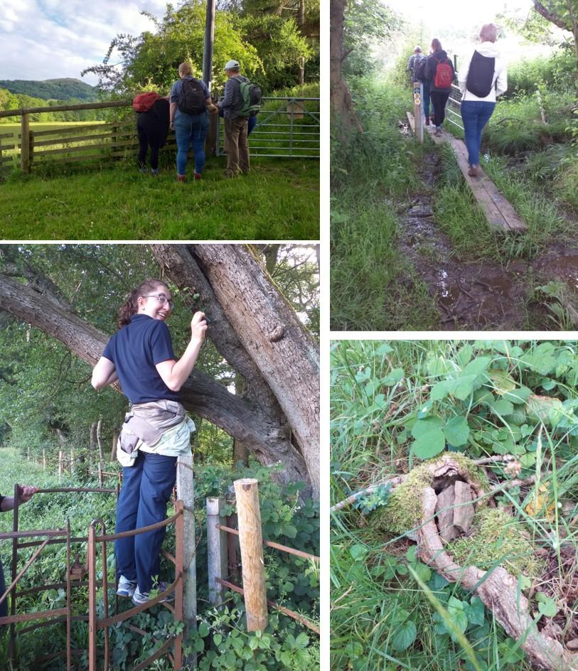 Merlin team finding geocaches
